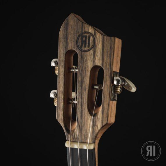 CBG-3-String-Montecristo-with-Humbucker-10
